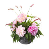 Bouquet of pink peonies and sorrel in a vase Royalty Free Stock Images