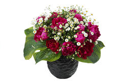 Bouquet of pink peonies and sorrel in a vase Stock Photography