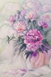 Bouquet of pink peonies watercolor Stock Images