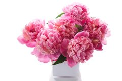 Bouquet of pink peonies in a wicker vase stock photo