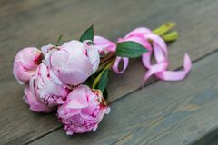 Bouquet of pink peony. Stock Image