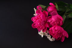 Bouquet of pink peony and small white flowers on dark background royalty free stock images