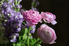 Bouquet of pink and purple flowers stock photo