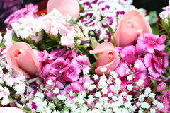 Bouquet of pink and purple flowers Royalty Free Stock Photography