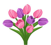 Bouquet of pink and purple tulips. Vector. stock illustration