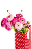 Bouquet of Pink Ranunculus, Buttercup Flowers Stock Image