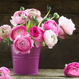 Bouquet of Pink Ranunculus Buttercup Flowers in a Vase Royalty Free Stock Images
