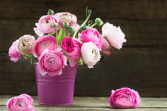 Bouquet of Pink Ranunculus, Buttercup Flowers Stock Photography