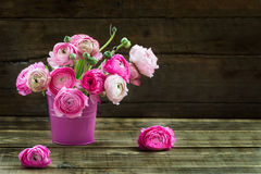 Bouquet of Pink Ranunculus, Buttercup Flowers Royalty Free Stock Photography