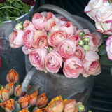 Bouquet of pink ranunculus Stock Photo