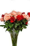 Bouquet of pink and red roses isolated Stock Photography