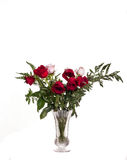 Bouquet of Pink and Red Roses on White Royalty Free Stock Photos