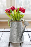 Bouquet of pink and red tulips Stock Image