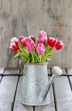 Bouquet of pink and red tulips Stock Photography
