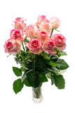 Bouquet of pink rose flowers on white background Royalty Free Stock Photo