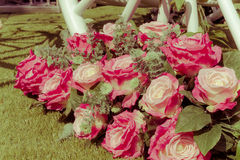 Bouquet of pink rose on the green grass in sunshine, retro and v Stock Photography