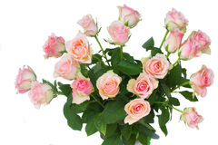 Bouquet of pink  roses Royalty Free Stock Photos