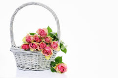 Bouquet of pink roses in basket Royalty Free Stock Image