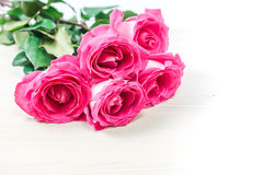 Bouquet of pink roses. Stock Images