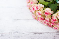 Bouquet of pink roses with blue ribbon for present on a vintage wooden background Royalty Free Stock Images