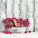 Bouquet of pink roses in box Royalty Free Stock Photos