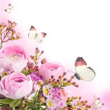Bouquet from pink roses and butterfly Royalty Free Stock Photography