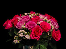 Bouquet of pink roses at closeup Stock Photos