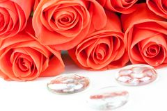 Bouquet of pink roses with drops Royalty Free Stock Image