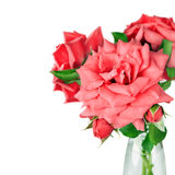 Bouquet of pink roses flowers in vase isolated on white backgrou Royalty Free Stock Images