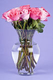 Bouquet of Pink Roses in a Glass Vase Stock Image