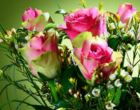 Bouquet of pink roses. Royalty Free Stock Photo