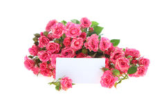 Bouquet of pink roses and greeting card Royalty Free Stock Images