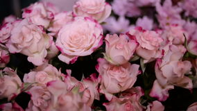 Bouquet of Pink roses. Moving forward stock video footage