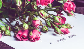 Bouquet of pink roses on a sheet of paper Stock Images