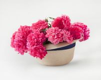 Pink roses in a hat royalty free stock images