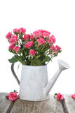 Bouquet of pink roses Royalty Free Stock Photography