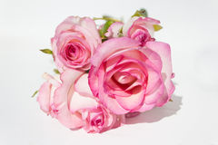 Bouquet pink roses on white background. Bunch pink roses on white background - copy space Royalty Free Stock Image