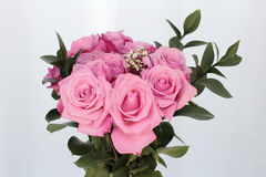 Bouquet of Pink Roses on a White Background. Top half of a pink rose flowers bouquet with green leaves with an off-white background. Close-up of a beautiful Stock Photos