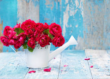Bouquet of pink roses in white watering can Royalty Free Stock Photography
