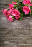 Bouquet of pink roses Stock Photography
