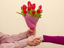 Bouquet of pink tulips Stock Photo