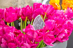 Bouquet of pink tulips at Bloemenmarkt Market, Amsterdam stock photo
