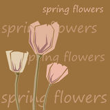 Bouquet of pink tulips. On a brown background. Vector illustration Stock Images