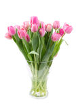 Bouquet of pink tulips in a clear vase stock photography