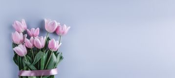 Bouquet of Pink tulips flowers over light blue background. Greeting card or wedding invitation. royalty free stock images