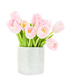 Bouquet of pink tulips in grey vase isolated over white. Selective focus Royalty Free Stock Photo