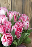 Bouquet pink tulips Royalty Free Stock Photography