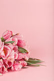 Bouquet of pink tulips on pink background royalty free stock photo