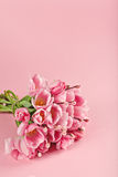 Bouquet of pink tulips on pink background royalty free stock photos
