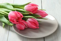 Bouquet of pink tulips royalty free stock photo